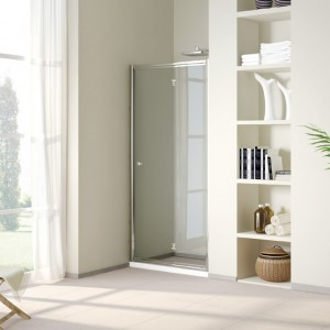 Shower Screen Pivot Door DY-PF153